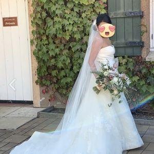 Vera Wang Ester Wedding Dress w/ Cathedral Veil